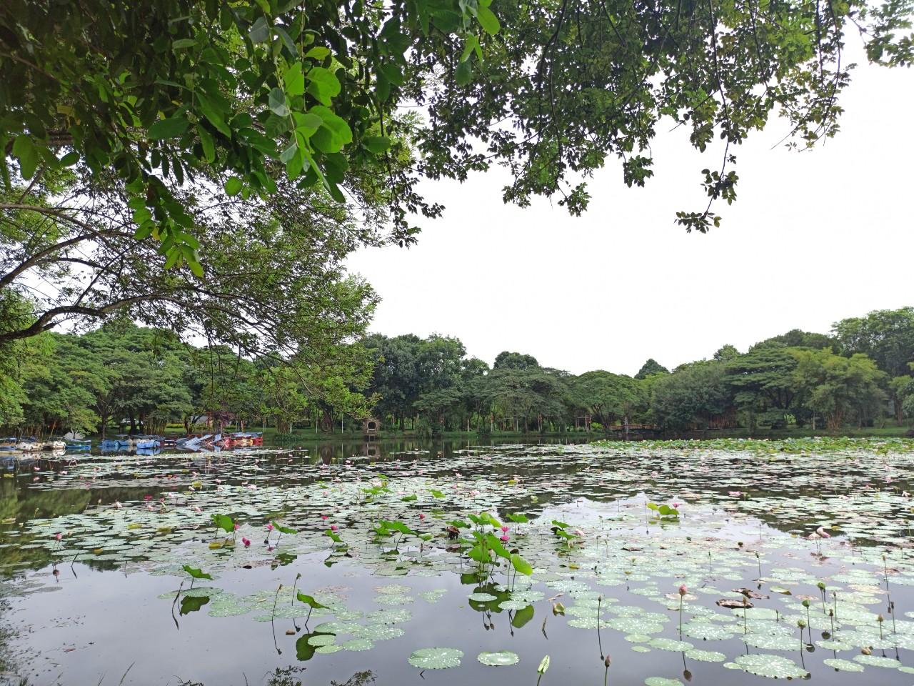Hồ Tuyền Tâm Thơ Mộng