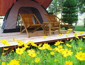 Khu Lều Trại Bằng Lăng